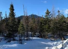 Mount Tripyramid Thornton New Hampshire